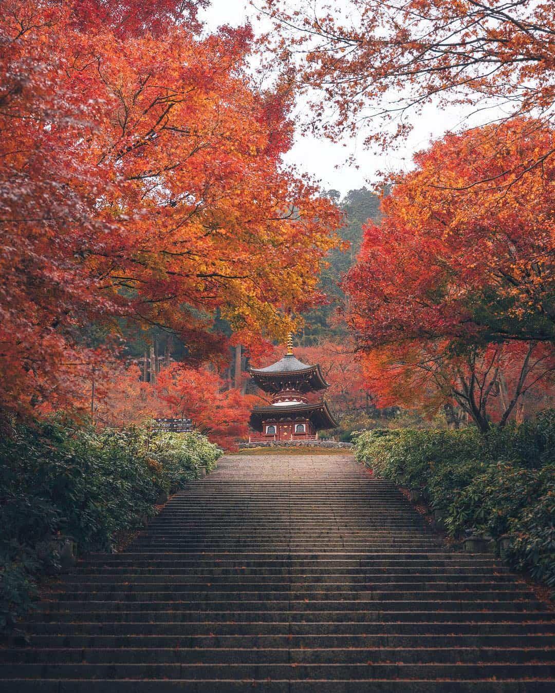Enchanting Fall Landscape Photos of Japan Hiroki Nose